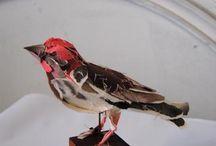 Torn paper bird / Torn paper