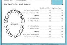 HSU Zähne