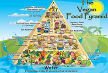 Vegan Nutrition / Life can't be all vegan cupcakes and carmine free candy. Plus, every now and then you need a little knowledge to counter well meaning folks who worry you'll waste away.