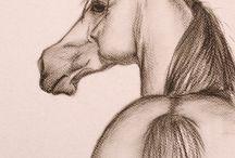 lovas rajzok