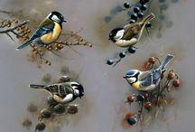 синички птички