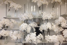 Behind the Scenes of Orly Khon / A behind the scenes sneak peak at Orly Khon floral studio. Let the fun unfold!