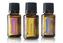 doTERRA / Love the way my HIPPY oils work for me! / by Carolyn Parsons