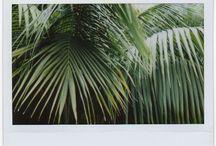 {outdoor spaces} / by Suki Mulberg Altamirano | Lexington PR