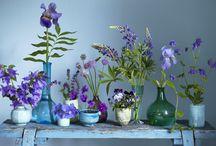 Cute flower decor / by Tasha Thompson