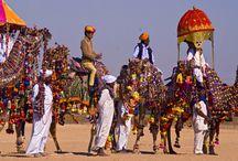 Jaisalmer / Enjoy the sand dunes and heritage of Jaisalmer.