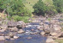 Rios | Rivers