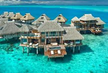 dreaming / Who knew I wanted to go to Bora Bora?! / by Devron Lloyd