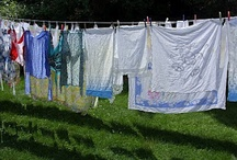 Clothesline / Clotheslines have always fascinated me .... Memories of my Aunt Louise's backyard... Freshness, sunshine, breezy