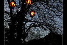 *уличные фонари*
