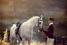 Equine Love <3