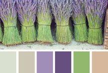 Palete de culori culoarea lavandei