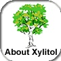 Xylitol For Oral Health / by Natural Gumption