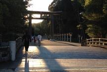 shrine  (神社)