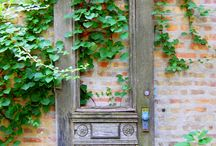 Upcycled Garden Features / I think it's great when you can give an item a second life in the garden. I always keep an eye out for things like disused gates, doors, mirrors, chairs and sideboards, they make a perfect feature in the right garden space.