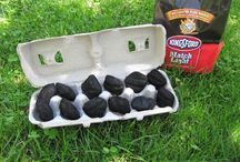 Camping Ideas / by Holly Mitchell