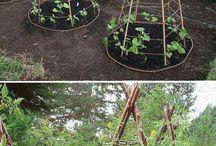Садовые фишки