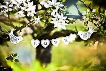 {Fotoeditorial - Blossom love}