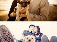 Dog photoshoot ideas