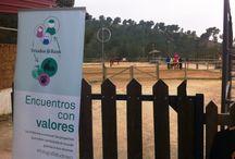 """Encuentros con valores - Murcia (Marzo 2015) / Clientes de Triodos Bank en Murcia conocieron la actividad de Centauro Quirón. Los impulsores de esta iniciativa proponen terapias ecuestres para """"potenciar las capacidades físicas, psíquicas, sociales y sensoriales"""" de personas con discapacidad."""