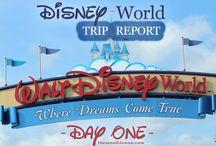 I LOVE Disney World!