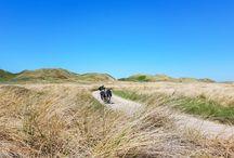 Radtour mit Vater und Sohn in Dänemark