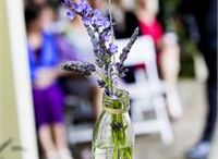 Spring Weddings / Spring wedding ideas from the hitched.com.au inspiration gallery