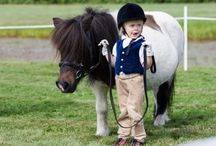 Horses & Kids
