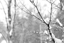 Winter Snow Picture Ideas.... / by Shannon Moreno