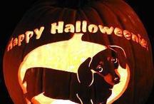 Halloween Ideas / by Jennifer Blickenstaff