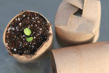 Gardening Hacks and Ideas