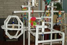 Birdie Brain Stimulation / Homemade toys, gyms and anything else to make a happy birdie baby / by Sharon Wegman