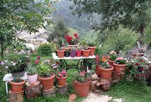 durdane 's garden