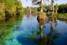 Florida Panhandle (ish)