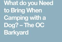 Camping (with dogs)