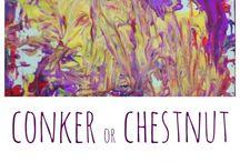 Conker craft