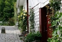 Stavanger City