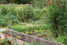 Garden & Outdoor stuff