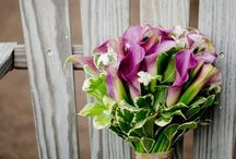 bridal bouquet ideas / bridal bouquet ideas from my past brides / by Ceci B Photography