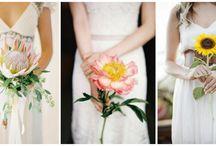 Rustic Wedding  / by Carly Crosier