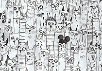 dużo kotów