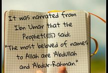 Rays of Islam