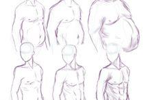 anatomia (desenho)