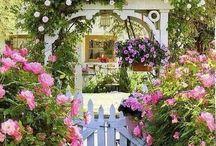 kert dekor / törött virágcserép