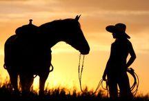 cowboy horse silhouette