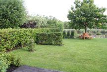 landschaps tuinen 1750-1850