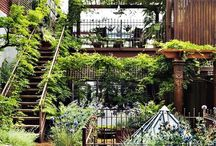 Garden Style / by Window Works