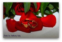 wedding rings / by Diane Castro