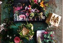 Flowers beauty& Plans