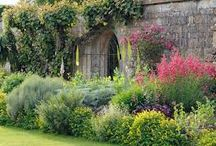 Home inspiration - Garden